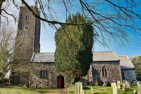 Church Exterior 15th Century Medieval Churchyard Yew Tree Tower Little Torrington