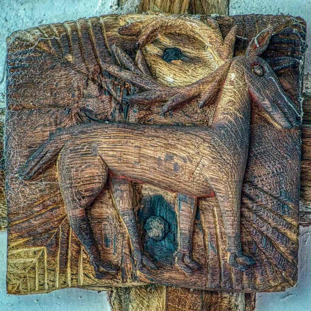 Roof Boss Wood Oak Carving Plain Deer 16th Century Medieval Coldridge