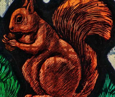 Stained Glass Squirrel Animal 20th Century George Cooper Abbs South Pool